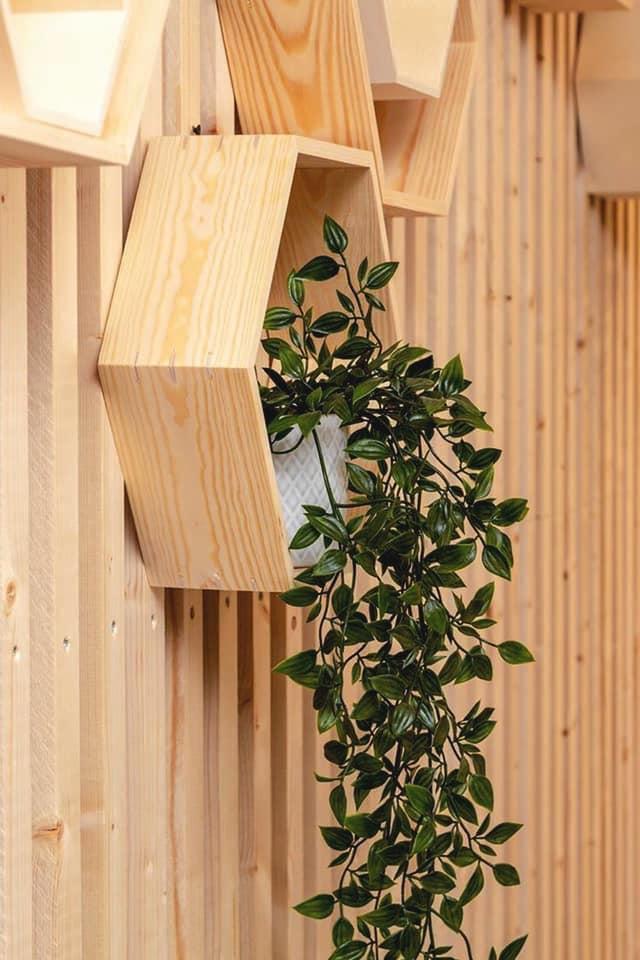 Décoration et agencement Institut de Nail Art à Marseille - Espace accueil avec mur étagère héxagonale en bois et plante verte, par Myll décors , Agence de décoration à Aix en Provence et dans le Var